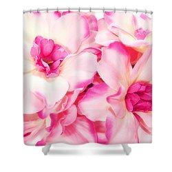 Spring Flowers  Shower Curtain by Michal Bednarek