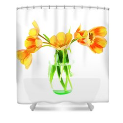 Spring Tulips Shower Curtain by Darren Fisher