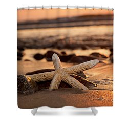 Starfish On The Beach At Sunset Shower Curtain