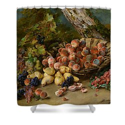 Still Life With Fruits Shower Curtain by Madeleine Jeanne Lemaire