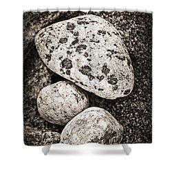 Stones Shower Curtain by Elena Elisseeva