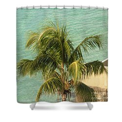 Shower Curtain featuring the digital art Storm's A Coming by Luther Fine Art