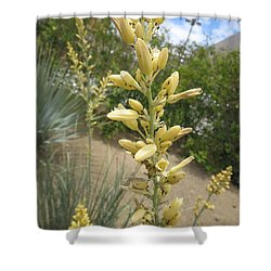 Shower Curtain featuring the photograph 1 String Flowers    Photographed Las Vegas May 2014 by Navin Joshi