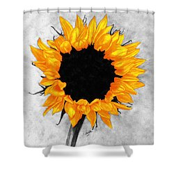 Shower Curtain featuring the photograph Sun Fire 2 by I'ina Van Lawick