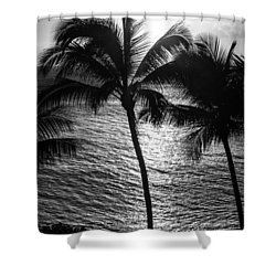Sunset Silhouette Shower Curtain by Colleen Coccia