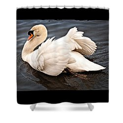 Swan One Shower Curtain
