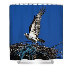 Take-off Shower Curtain