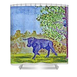 The Bull Is Loose Shower Curtain by Fred Jinkins