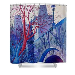 The Charles Bridge Blues Shower Curtain
