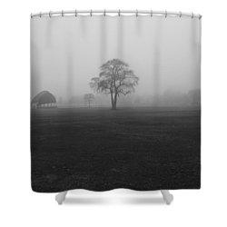 The Fog Tree Shower Curtain
