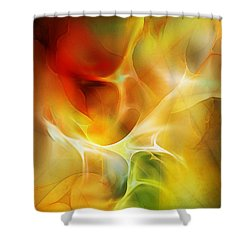 The Heart Of The Matter Shower Curtain by David Lane