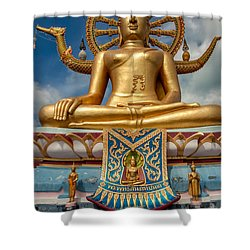The Lord Buddha Shower Curtain by Adrian Evans