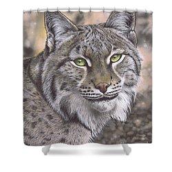 The Lynx Effect Shower Curtain
