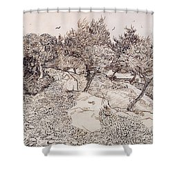 The Olive Trees Shower Curtain by Vincent Van Gogh