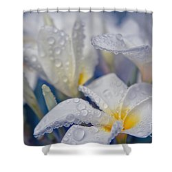 Shower Curtain featuring the photograph The Wind Of Love by Sharon Mau