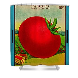Tomato Seed Package. Antique. 100 Years Old Shower Curtain