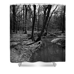 Thorn Creek Shower Curtain by Verana Stark