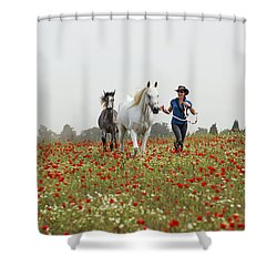 Three At The Poppies' Field... 3 Shower Curtain by Dubi Roman