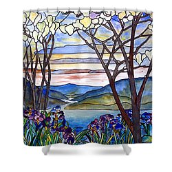 Stained Glass Tiffany Frank Memorial Window Shower Curtain by Donna Walsh
