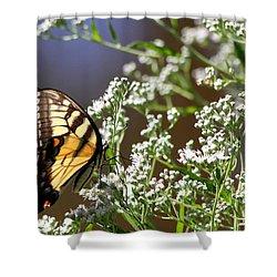 Tiger Shower Curtain by Reid Callaway