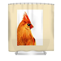 Tis The Season Shower Curtain by Angela Davies