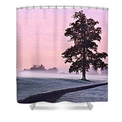 Shower Curtain featuring the photograph Tree At Dawn / Maynooth by Barry O Carroll