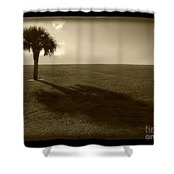 Tree Shower Curtain by Bruce Bain