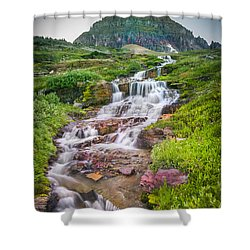 Triple Falls Stream Glacier National Park Shower Curtain by Rich Franco