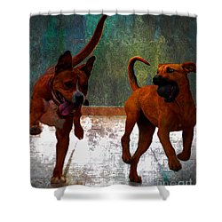 Shower Curtain featuring the photograph Two Dogs by John  Kolenberg