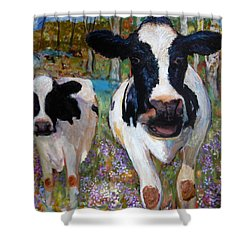 Up Front Cows Shower Curtain