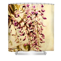 Vintage Wisteria Shower Curtain