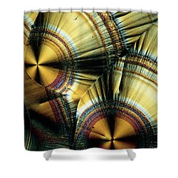 Vitamin C Crystals Shower Curtain by Claude Nuridsany and Marie Perennou