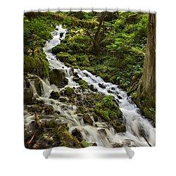 Wahkeena Creek Shower Curtain