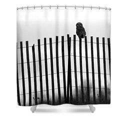 Waiting Owl Shower Curtain