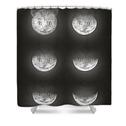 Waning Cheshire Shower Curtain
