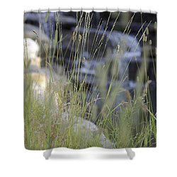 Shower Curtain featuring the photograph Water Is Life 2 by Teo SITCHET-KANDA