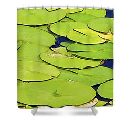 Water Lilly Shower Curtain