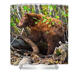 Where The Wild Things Are Shower Curtain
