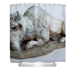 White Buffalo-sculpture Shower Curtain by Derrick Higgins