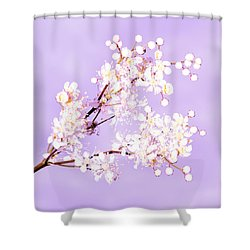 White Flowers  Shower Curtain by Tommytechno Sweden