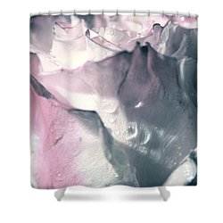 White Pink Rose Shower Curtain