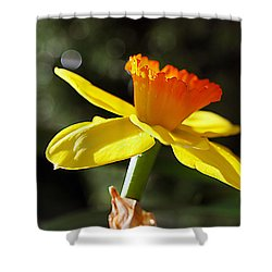 Shower Curtain featuring the photograph Wide Open by Joe Schofield