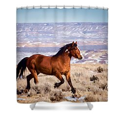 Eagle - Wild Horse Stallion Shower Curtain