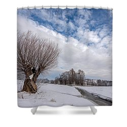 Shower Curtain featuring the photograph Willow by Davorin Mance