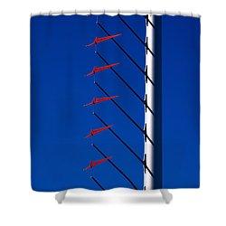 Wind Arrows Shower Curtain by Rona Black