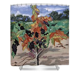 Wine Country Shower Curtain by Reba Baptist