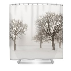 Winter Trees In Fog Shower Curtain by Elena Elisseeva