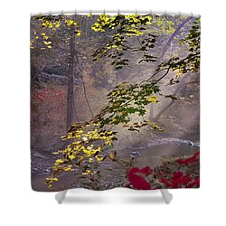 Wissahickon Autumn Shower Curtain by Bill Cannon
