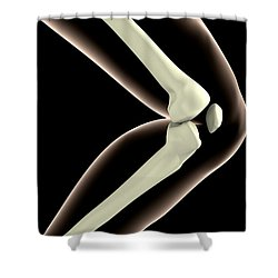 X-ray Image Of Knee Shower Curtain by Stocktrek Images