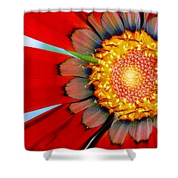Shower Curtain featuring the photograph Zinnia In Red by Wendy Wilton